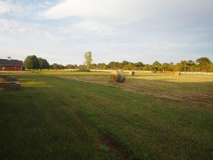 94-acres-Paoli-Oklahoma-16