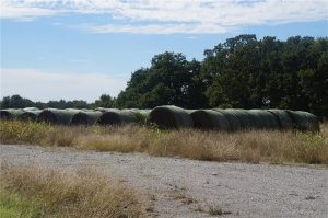 374-acres-Elmore-City-Oklahoma-18