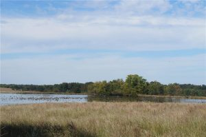 374-acres-Elmore-City-Oklahoma-2