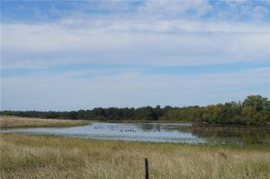 374-acres-Elmore-City-Oklahoma-1