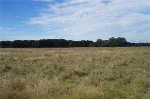 374-acres-Elmore-City-Oklahoma-23